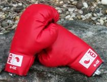 Kids Fun Boxing Gloves